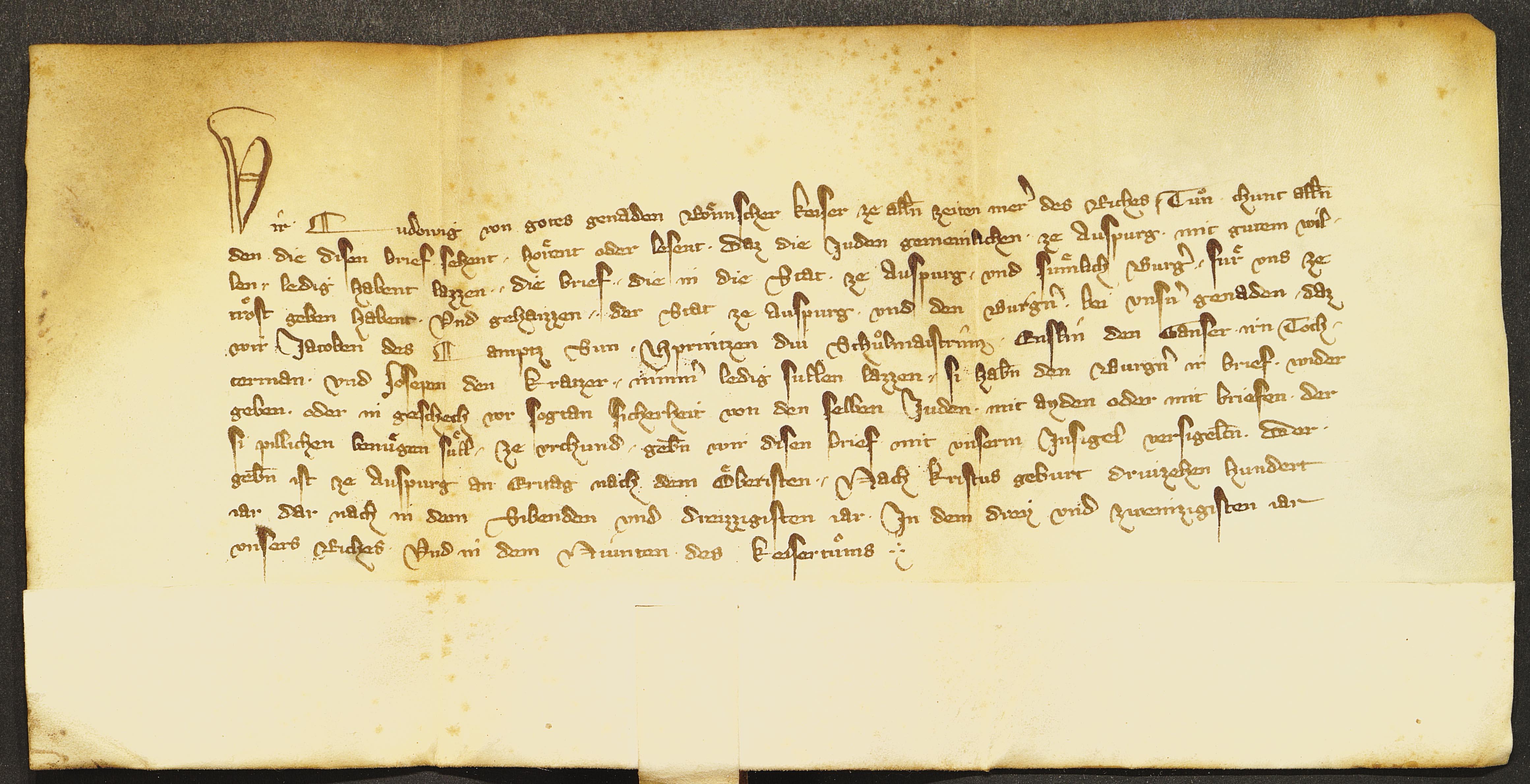 Die Urkundensprache bei Ludwig der Bayer