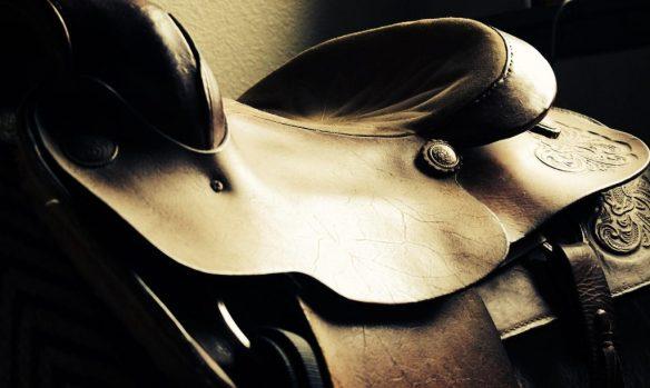 saddle-2342028_1920-1024x613