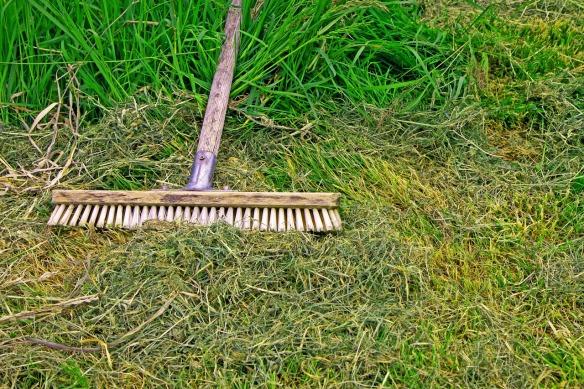 broom-4565111_1280