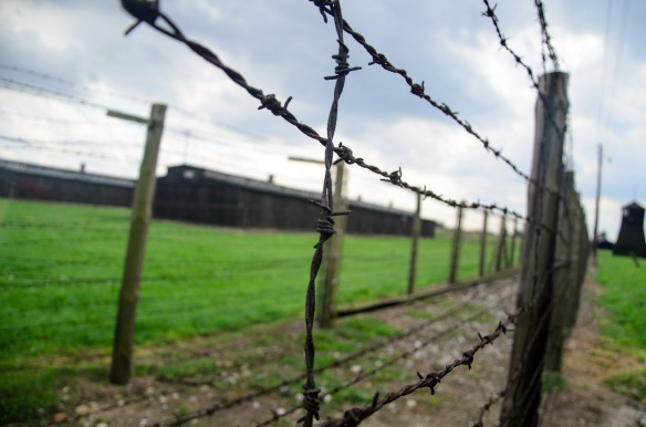 fence-444416_1920